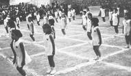1973 / Γυμναστικές επιδείξεις